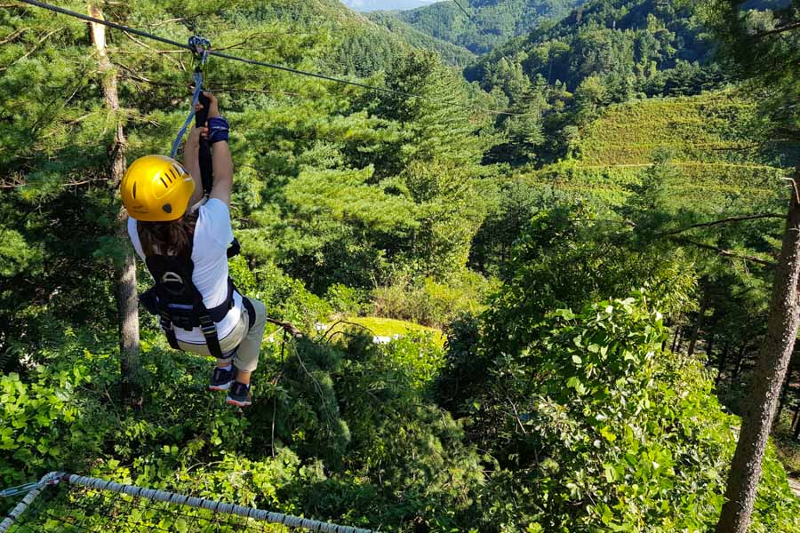 Students enjoyed thrilling zip-lines.